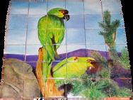 Guacamayas en la sierra