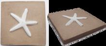 Estrella de Mar / Starfish