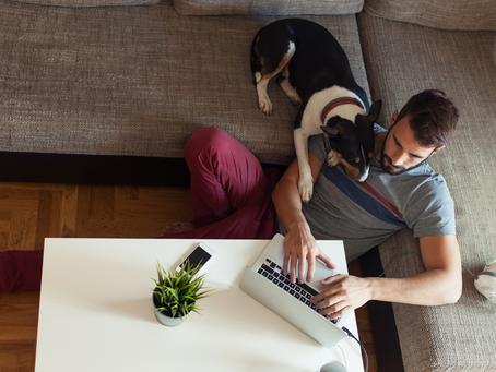 Working from Home (WFH) Best Practices