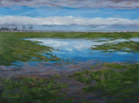 2017 Flooded fields Carters Beach_edited