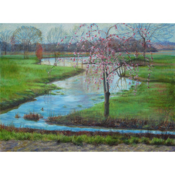 Meadow Stream and Cherry Tree