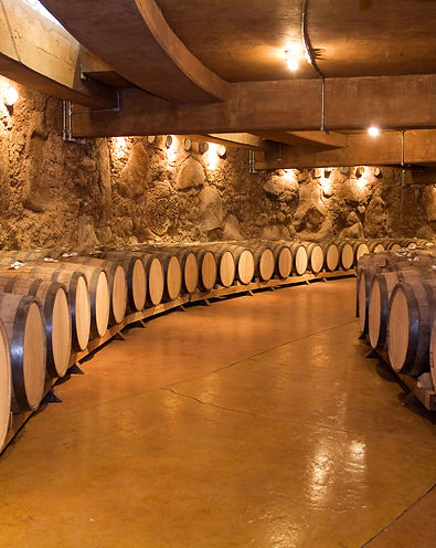 Wine barrels stacked in the old cellar o