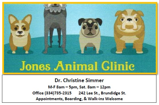 Jones Animal Clinic