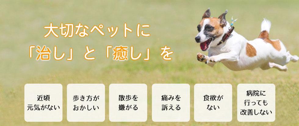 imageのコピー.jpg