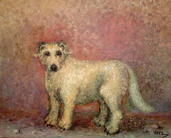Perro. 2003