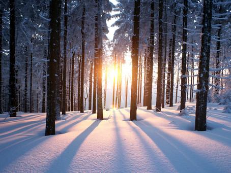 happy winter solstice 💫