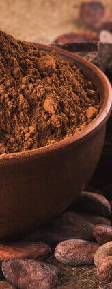 tirvia_single_cacao-chocolate.jpg