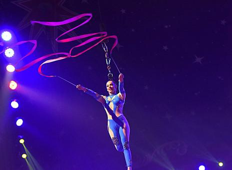 cirque de noel toulouse