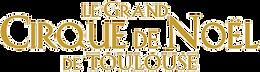 Site internet Cirque de Noël Toulouse