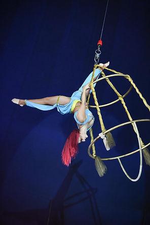 Cirque de Noël Toulouse