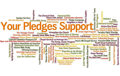 pledge word cloud.jpg