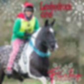 lanhydrock cover.jpg