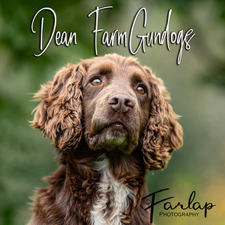 dean farm cover.jpg