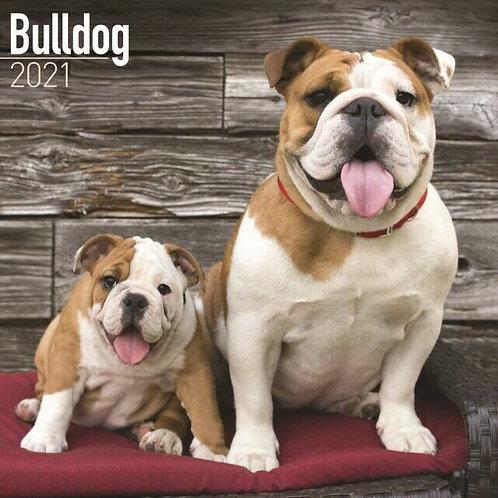 Bulldog Calendar 2021