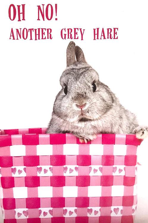 Grey Hare Birthday Card