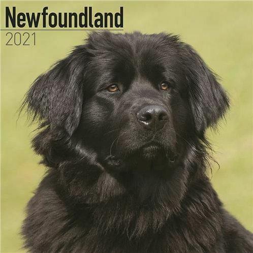 Newfoundland Calendar 2021