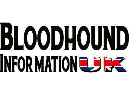 Bloodhound information UK