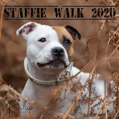 stafy walk.jpg