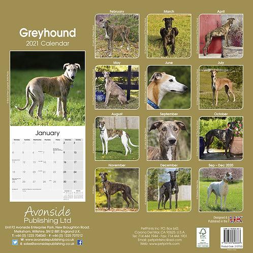 Greyhound Calendar 2021