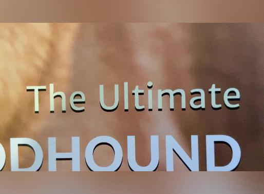Bloodhound Calendars