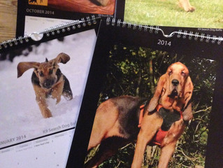 Last Chance To Get The K9SD 2014 Calendar