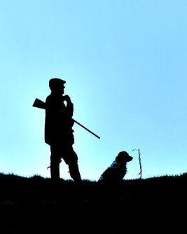 gun and dog silhouette.jpg