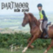 dartmoor cover.jpg