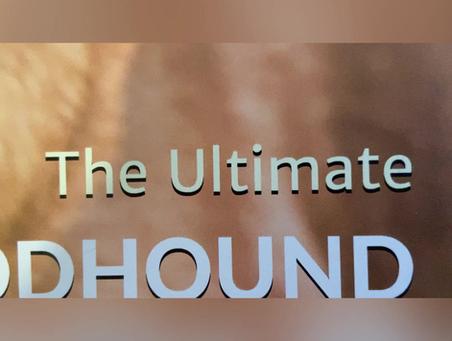 Bloodhound Calendar 2021