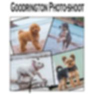 goodrington cover.jpg