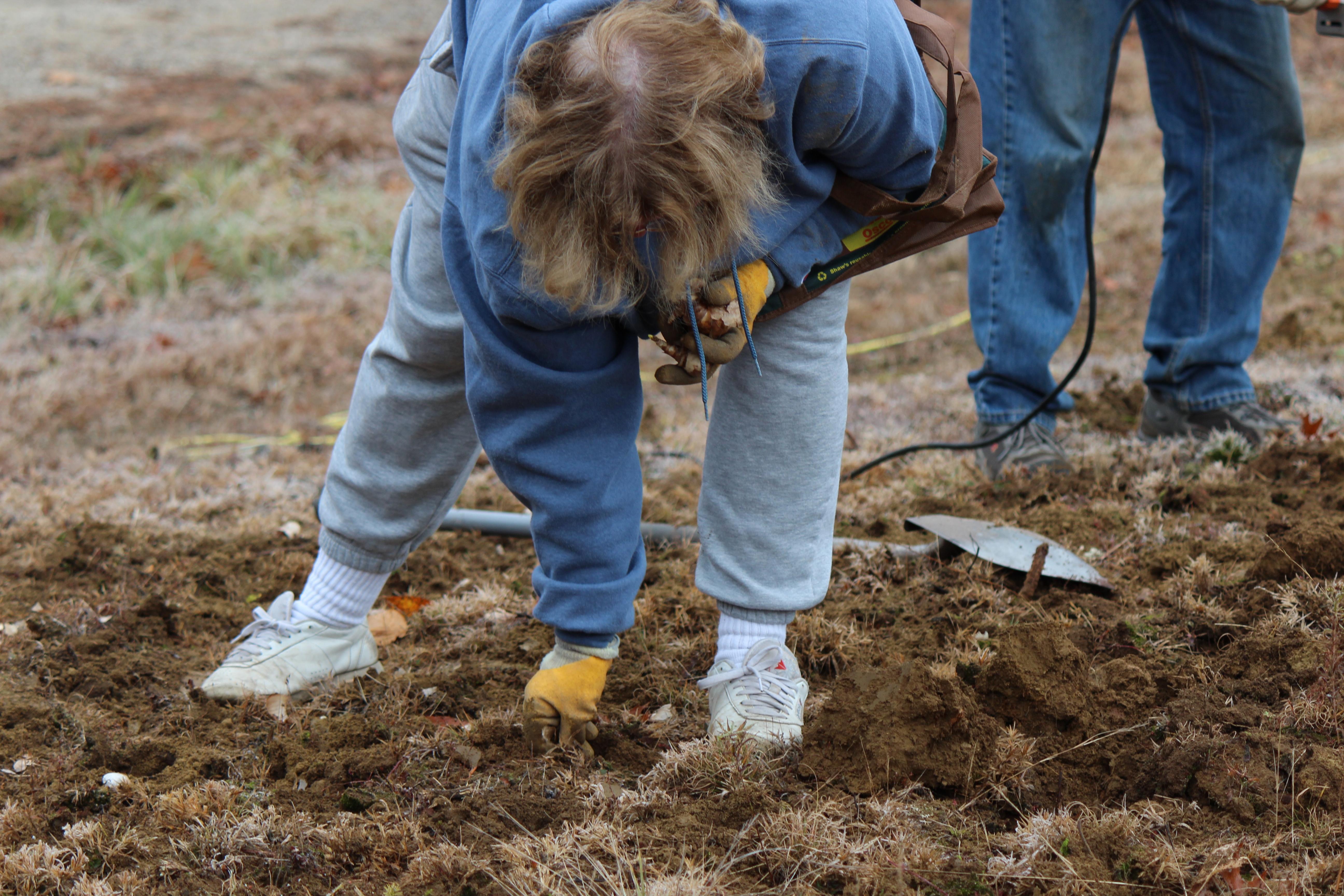 public planting 2011 (92).JPG