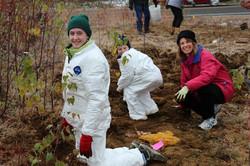 public planting 2011 (5).JPG