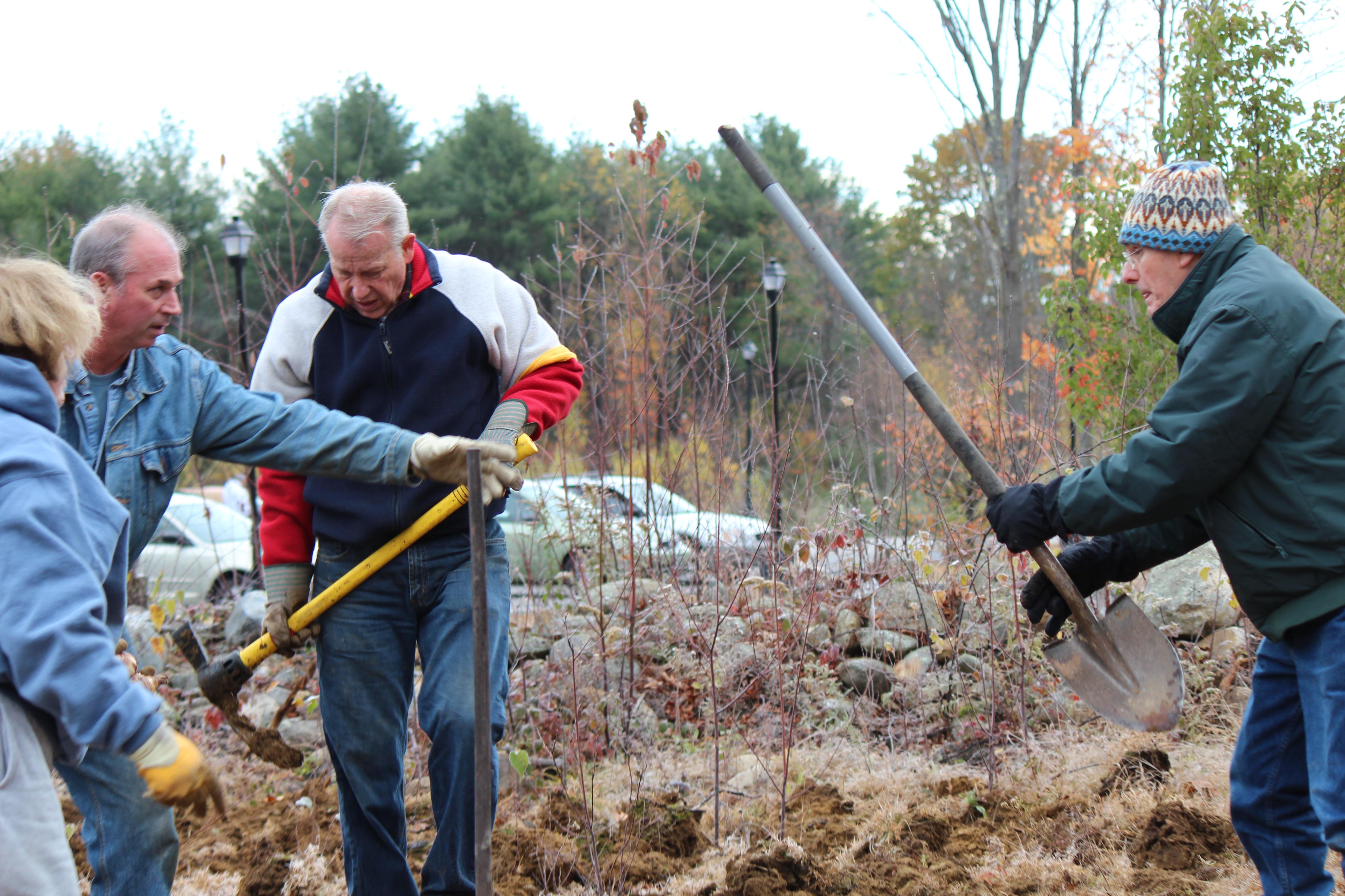 public planting 2011 (67).JPG