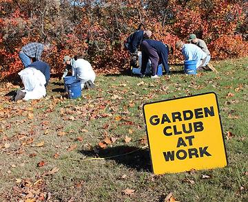 2014 Daffodil Planting 10-25-14 047 (Lar