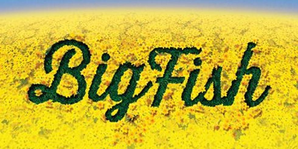 Volunteer @ Big Fish
