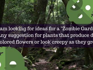 Ask A Gardener - Zombie Garden!