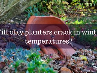 Ask a Gardener - Winterizing Clay Pots