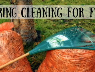 Spring Cleaning for Fall