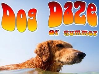 Dog Daze of Summer