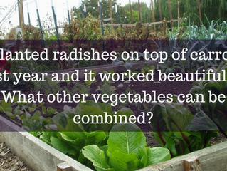 Ask A Gardener - Companion Planting