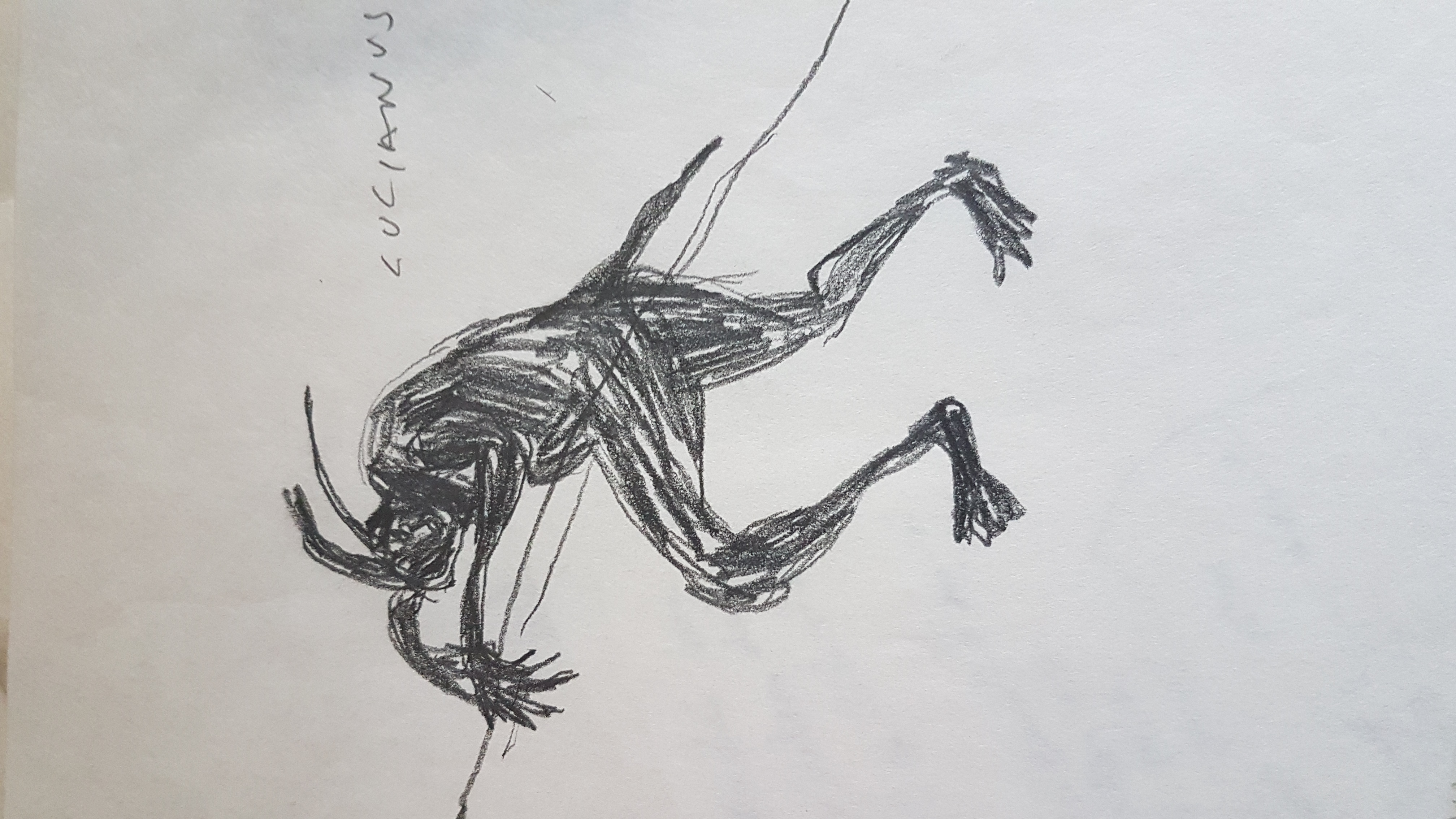 20201102_121009(1)