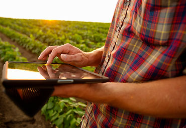 agronomist in the field with tablet