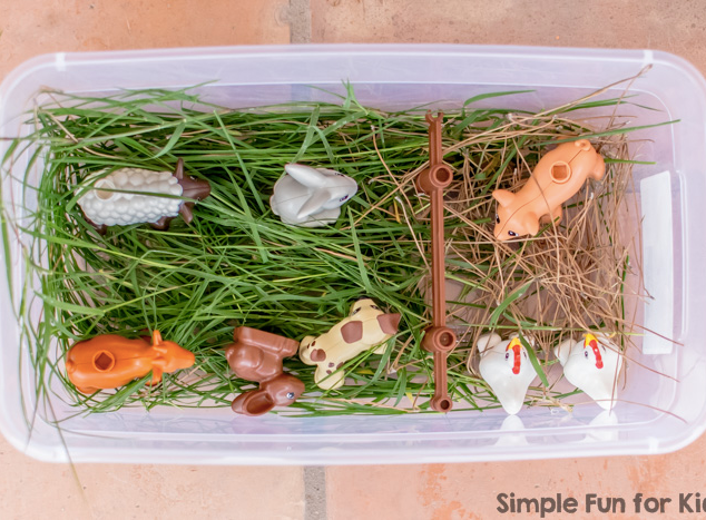 Farm Animal Sensory Bin: