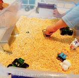 Corn Meal Sensory Bin
