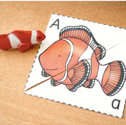 Alphabet Ocean Animals