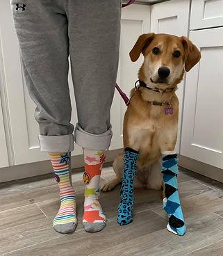 socks tricia.jpg