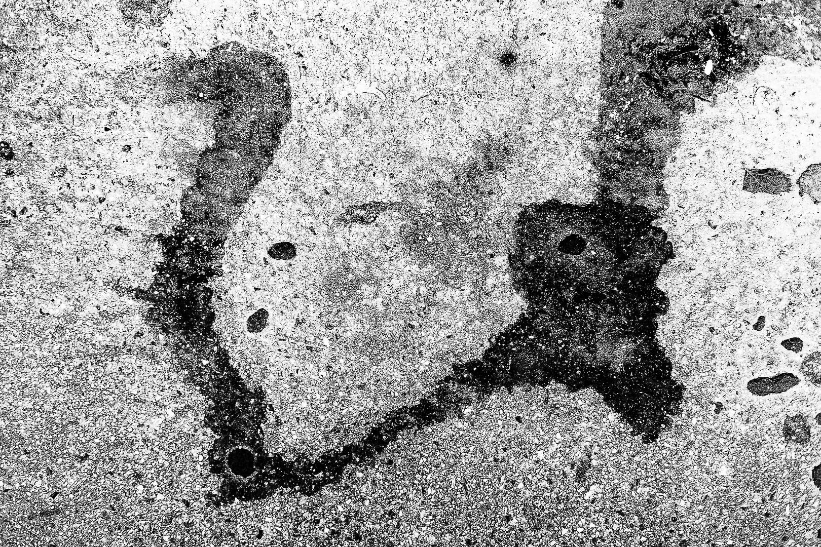 a fragment of 'zapf de pipi'