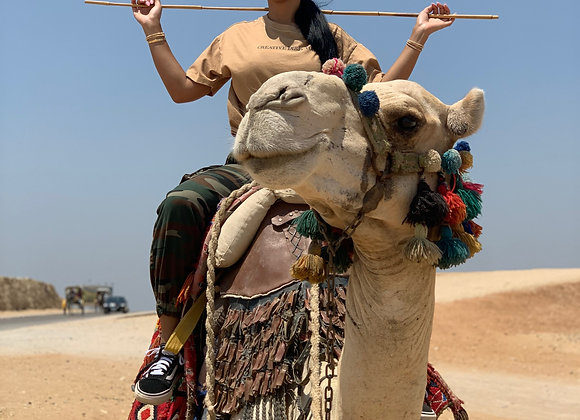 EGYPT's Itinerary/Travel Guide