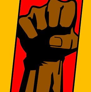 Brown Dragon Fist.jpg