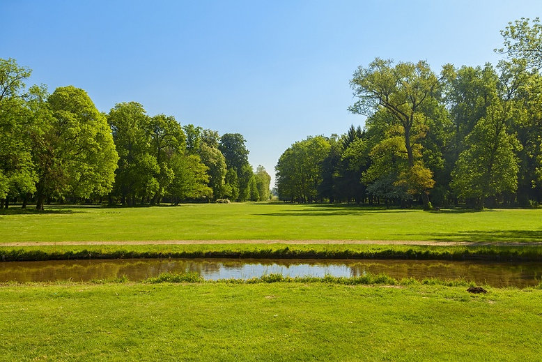 Parco-di-Monza.jpg