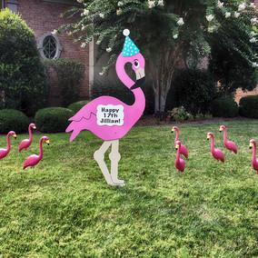 flamingo-package.jpg